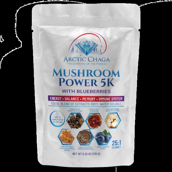 Mushroom Power 5 with Blueberries