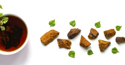 Chaga Mushrooms: Do They Have Any Side Effects?